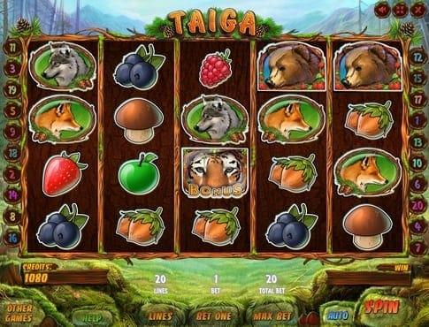 Комбинация с бонусом в игре Taiga